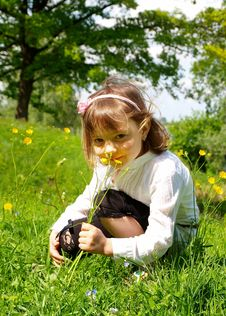 Free Girl Picking Flowers Stock Photography - 19923482