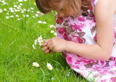 Free Girl Picking Flowers Royalty Free Stock Image - 19924026