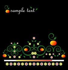 Free Decorative Framework With Flower Royalty Free Stock Photos - 19924918