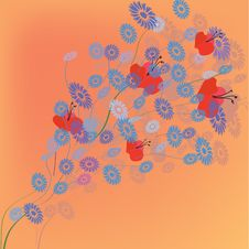 Greeting Card With Summer Flowers Royalty Free Stock Photo