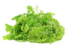 Free Three Varieties Of Lettuce Stock Photography - 19925802