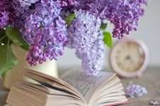 Bouquet Of Lilac Royalty Free Stock Images