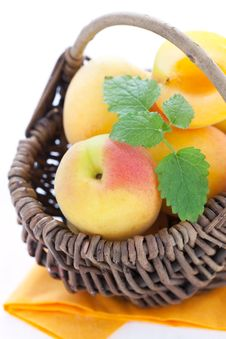 Free Fresh Apricots Stock Photography - 19927202
