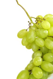 Free Fresh Grape Royalty Free Stock Photography - 19927357