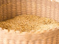 Free Paddy In Wicker Basket Stock Photos - 19927533