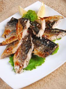 Free Fish Steaks Royalty Free Stock Image - 19927696
