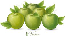 Green Apples And Leaves Stock Image