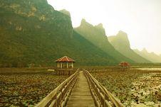 Free Footbridge In Lake Royalty Free Stock Image - 19929356