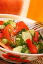 Free Fresh Vegetable Salad Royalty Free Stock Photos - 19931238