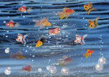 Free Marine Life Stock Images - 19930154