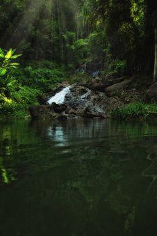 Free Tropic Lake Royalty Free Stock Image - 19930546