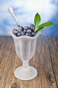 Free A Blueberry Cup Royalty Free Stock Photo - 19931645