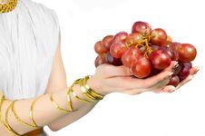 Free Grapes Royalty Free Stock Photo - 19932345