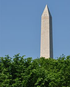Free Washington Monument Behind Trees Stock Images - 19933624