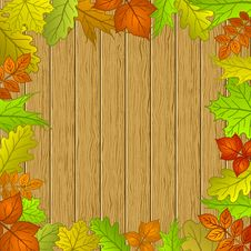 Free Leaves And Wooden Fence Stock Photo - 19935230