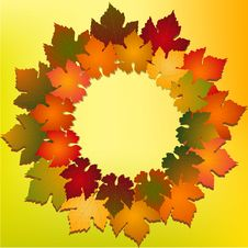 Free Autumn Leaves Royalty Free Stock Image - 19935366