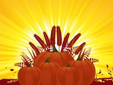 Free Pumpkins And Corn Royalty Free Stock Photos - 19935378