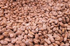 Free Background Of Beans Stock Image - 19943901