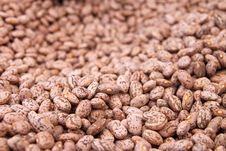 Free Background Of Beans Royalty Free Stock Photo - 19943905