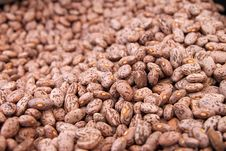 Free Background Of Beans Royalty Free Stock Images - 19943909
