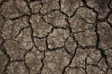 Free Cracked Soil. Stock Photo - 19949260