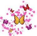Free Butterflies Royalty Free Stock Image - 19953376