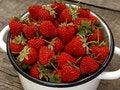 Free Fresh Strawberries Royalty Free Stock Photos - 19956798