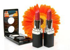 Free Decorative Cosmetics Stock Photography - 19950192