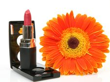Free Decorative Cosmetics Stock Images - 19950214