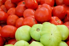 Free Red And Green Stock Image - 19950361