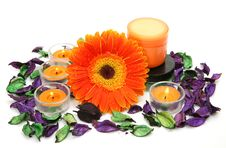 Free Flower And Candles Royalty Free Stock Image - 19950496