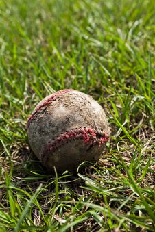 Free Baseball Stock Image - 19951061