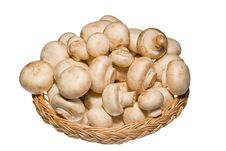 Free Basket Full Of Champignons Isolated On White Royalty Free Stock Image - 19952186