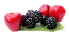Free Blackberry, Cherry Stock Photo - 19952390