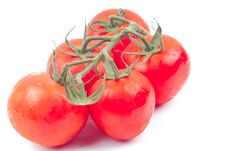 Free Red Tomatoes On A Branch Stock Photography - 19952442