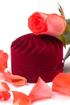 Free Closed Box And Lying Next To Rose Petals Royalty Free Stock Photos - 19952598