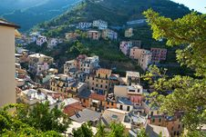 Free Riomaggiore Hillside Royalty Free Stock Image - 19953036