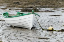 Free White Rowboat Stock Images - 19953584