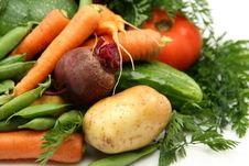 Free Fresh Vegetables Stock Photography - 19955172