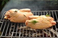 Free Chicken On Grill Royalty Free Stock Photo - 19957905