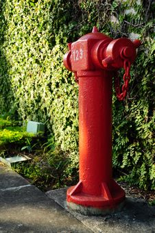 Free Fire Hydrant Stock Photos - 19958333