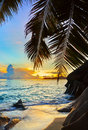 Free Tropical Beach At Sunset Royalty Free Stock Photo - 19963525