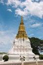 Free Phra Chedi Sri Suriyothai Royalty Free Stock Photo - 19966405