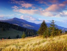 Free Summer Landscape Royalty Free Stock Photos - 19962608