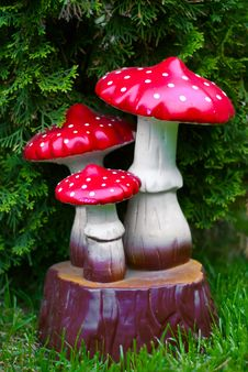 Free Garden Mushrooms Royalty Free Stock Photos - 19963138