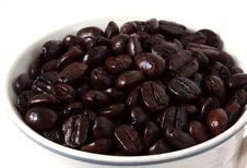 Free Coffee Royalty Free Stock Photos - 19964208