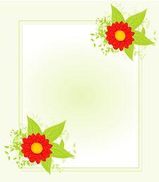 Free Flowers Stock Photos - 19964273