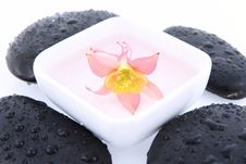 Spa Stones And Floating Flower Royalty Free Stock Photography