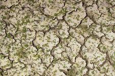 Dry Soil Mosaic. Stock Photos