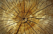 Free Wood Cut Royalty Free Stock Images - 19967329
